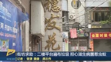 (DV现场)街坊求助:二楼平台遍布垃圾 担心滋生病菌惹虫蚁