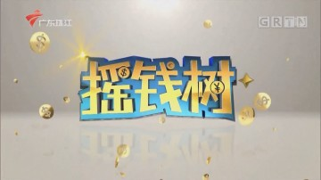 [HD][2020-03-19]摇钱树:曾文静卖鸡记