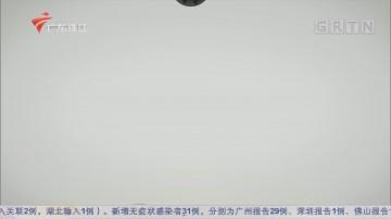 [HD][2020-04-13]文化珠江:镌木生香