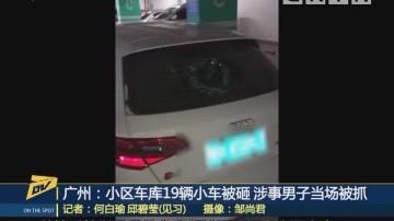 (DV现场)广州:小区车库19辆小车被砸 涉事男子当场被抓