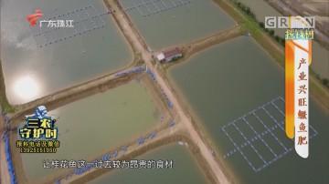 [HD][2020-04-20]摇钱树:产业兴旺鳜鱼肥