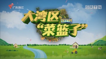[HD][2020-04-09]摇钱树:流溪河畔的桑葚果