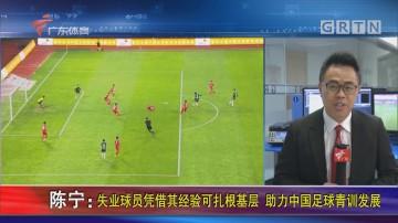 陈宁:失业球员凭借其经验可扎根基层 助力中国足球青训发展