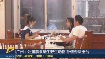 广州:处置禁食陆生野生动物 补偿办法出台