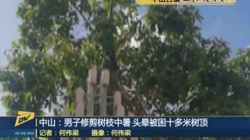 中山:男子修剪树枝中暑 头晕被困十多米树顶