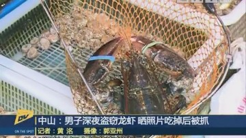 中山:男子深夜盗窃龙虾 晒照片吃掉后被抓