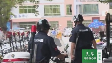摊贩投诉:路边摆卖荔枝 遭到暴力对待