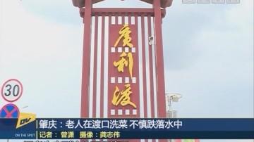 肇庆:老人在渡口洗菜 不慎跌落水中