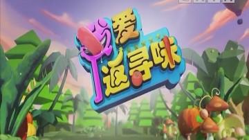 [2020-07-03]我爱返寻味:沙姜焗岭南第一鸡