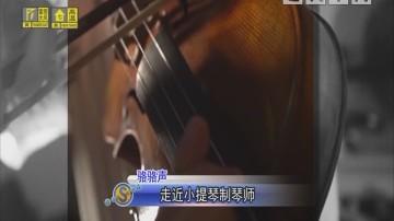 骆骆声 走近小提琴制琴师