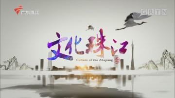 [HD][2020-09-22]文化珠江:岭南文化青苗系列随心飞扬