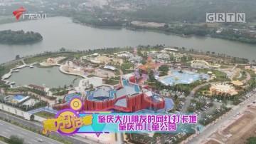 [HD][2020-11-26]南方小记者:肇庆大小朋友的网红打卡地 肇庆市儿童公园