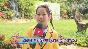 [HD][2020-11-25]南方小记者:全国暨广东省保护野生动物宣传月长隆启动
