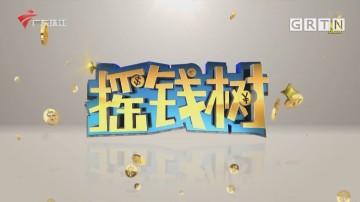 [HD][2020-12-17]摇钱树:八千亩待嫁沙糖桔