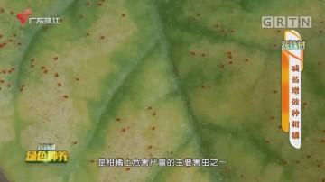 [HD][2020-12-08]摇钱树:减药增效种柑橘