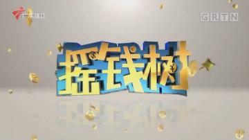 """[HD][2020-12-07]摇钱树:搭上""""快车苞"""""""
