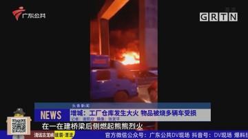 增城:工厂仓库发生大火 物品被烧多辆车受损