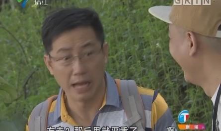 [2017-12-10]外来媳妇本地郎:路边的野花不要采