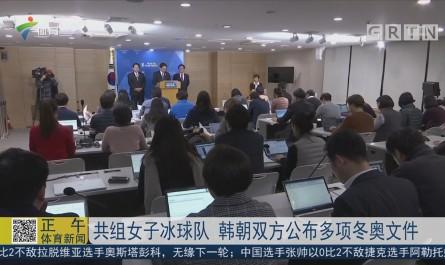 共组女子冰球队 韩朝双方公布多项冬奥文件