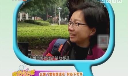 [2018-01-12]南方小记者:生活调查