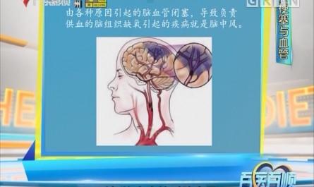 [2018-02-16]百医百顺:脑梗塞与血管