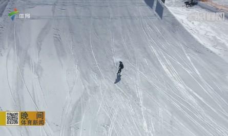 自由式滑雪坡面障碍技巧赛 美国选手包揽冠军
