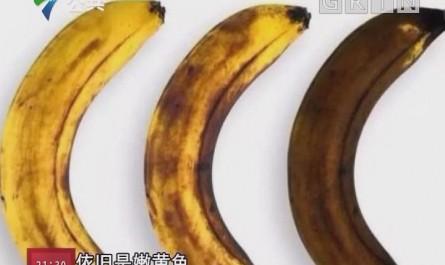 香蕉不能放冰箱?如何保存更安心?