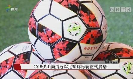 2018佛山南海冠军足球锦标赛正式启动