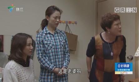 [HD][2019-01-19]外來媳婦本地郎:最后一根稻草(下)