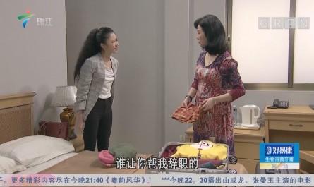 [HD][2019-02-03]外来媳妇本地郎:姑婿相逢(下)