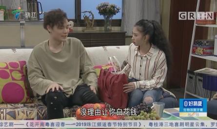[HD][2019-02-03]外来媳妇本地郎:姑婿相逢(上)