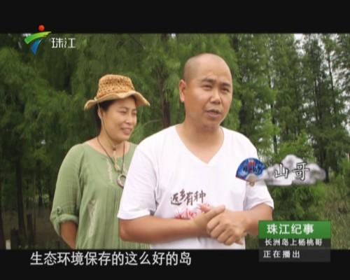 """20150728《珠江纪事》:长洲岛上的""""杨桃哥"""""""