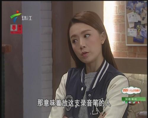 电视剧:外来媳妇本地郎——窃听风波
