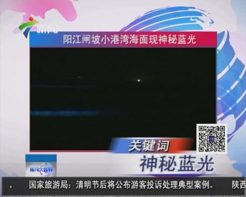 阳江闸坡小港湾海面现神秘蓝光
