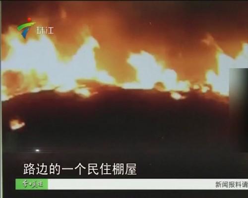 湛江:大火无情人有情 村民火场救出数十条狗