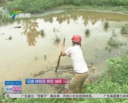 阳江阳东:黑色淤泥能平沟 最深有两米