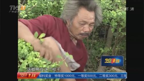 东莞桥头镇:受伤老人草丛过一周 幸获接济