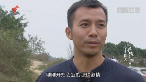 [HD][2018-03-20]中国梦·创新动力:绿手指之再战平沙农场