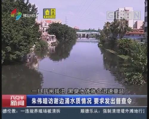 佛山:朱伟暗访谢边涌水质情况 要求发出督查令