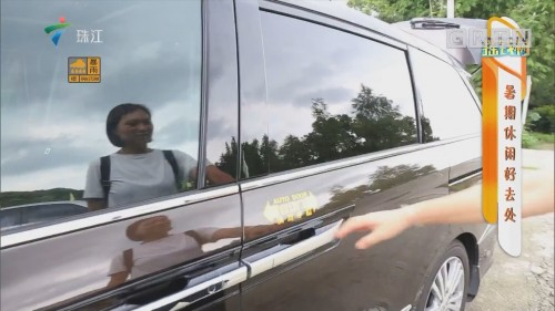 [HD][2019-07-22]摇钱树:暑期休闲好去处