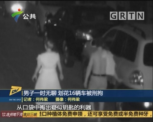 (DV现场)男子一时无聊 划花16辆车被刑拘