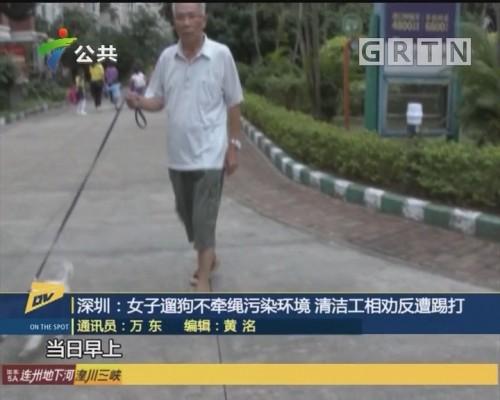 (DV现场)深圳:女子遛狗不牵绳污染环境 清洁工相劝反遭踢打