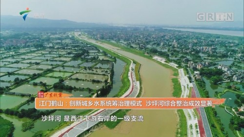 江门鹤山:创新城乡水系统筹治理模式 沙坪河综合整治成效显著