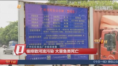 广州旺旺食品厂涉偷排被查 偷排致河流污染 大量鱼类死亡