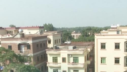 吴川:鸡粪厂臭味污染 环保局责令整改