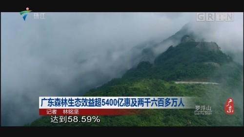 广东森林生态效益超5400亿惠及两千六百多万人