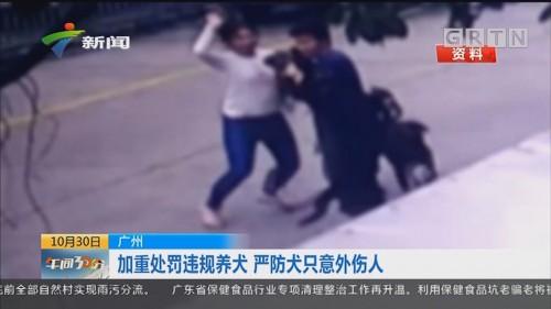 广州:加重处罚违规养犬 严防犬只意外伤人
