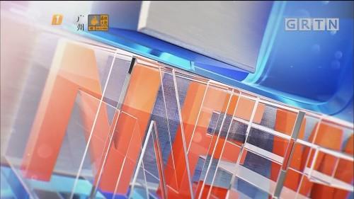 "[HD][2019-10-29]南方财经报道:加快推进""四个出新出彩"" 广深""双核联动""支撑""一核一带一区"""