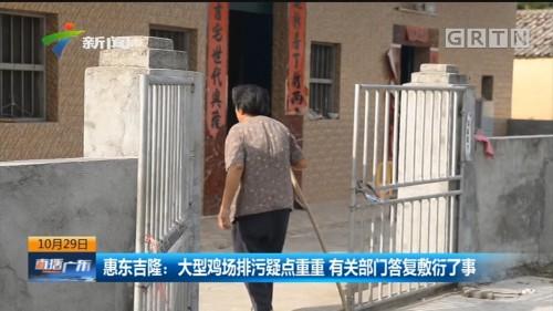 惠东吉隆:大型鸡场排污疑点重重 有关部门答复敷衍了事
