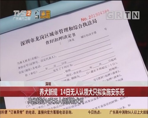 深圳:养犬新规 14日无人认领犬只拟实施安乐死